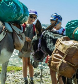rando pyrénées avec des ânes