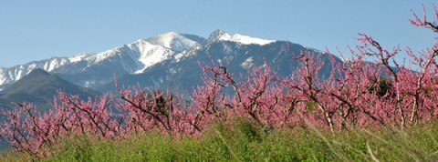 le canigou grand site de France
