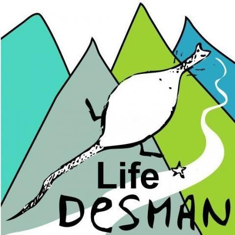 life desman