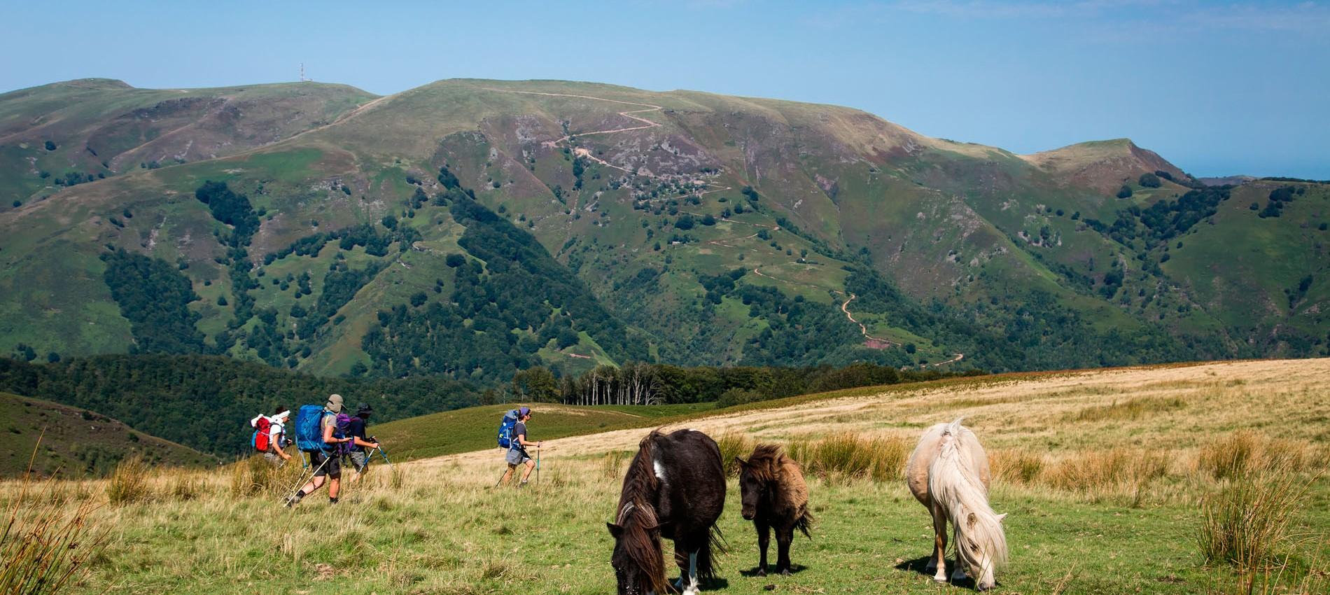 randonnée la rhune pays basque