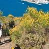 Randonnée Collioure Cadaques - Port de la Selva