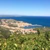 Vue plongeante sur Collioure et sa baie
