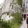 Chemin de la Mâture - vallée d'Aspe