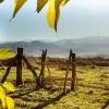 Paysages de Soule - Le Pays Basque