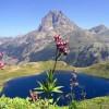 Pic du Midi d'Ossau et lac d'Ayous