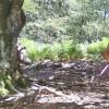 Trail Espagne Collioure Cadaques